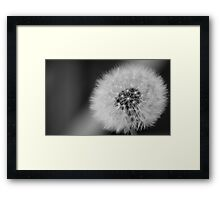 dandelion Clockwork Framed Print