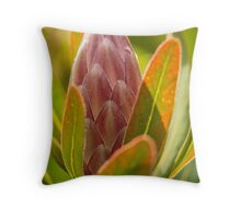 Protea Throw Pillow