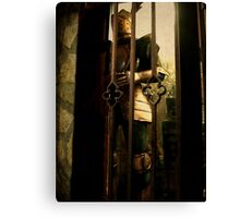 Could This Be My Knight In Shining Armour? Canvas Print