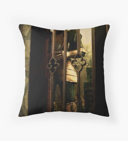 Could This Be My Knight In Shining Armour? Throw Pillow