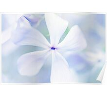 Floral in Pastel Tones of Blue Poster