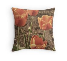 One Spring Morning Throw Pillow