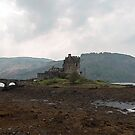 Cartoon - Structure of the Eilean Donan Castle by ashishagarwal74