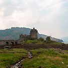 Cartoon - Structure of the Eilean Donan Castle with a stone bridge by ashishagarwal74