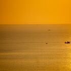 Sea of Gold. by jannina