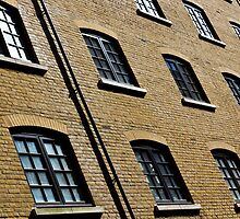 Butlers Wharf Windows by DavidHornchurch