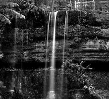 Russell Falls B&W - Tasmania by Steve Bass