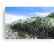 Beal rocks and sand dunes Canvas Print