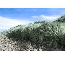 Beal rocks and sand dunes Photographic Print