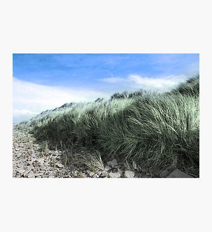 Beal rocks and sand dunes Photographic Print