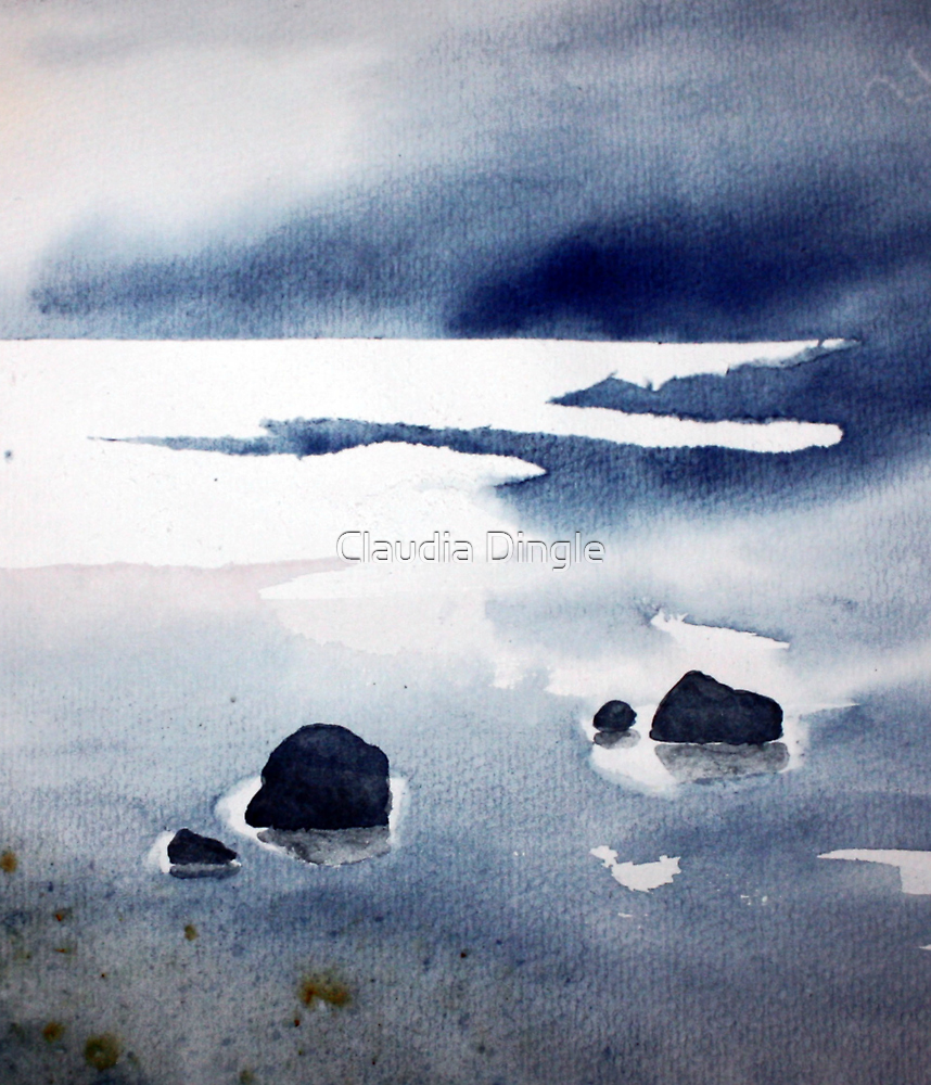 rock pools at low tide by Claudia Dingle