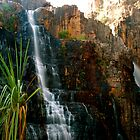 Twin Falls by pictureit