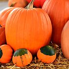 Pumpkins by Mike Oliver