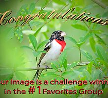 #1 Favorites Group Challenge Winner Banner by imagetj
