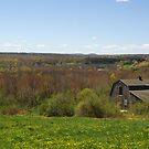 The Connecticut Valley in Springtime by Margie Avellino