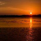 South Carolina Sunset by Mike Oliver