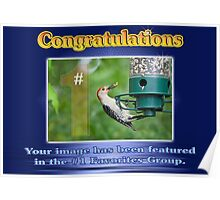 #1 Favorites Group Featured BAnner Poster