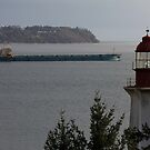 Leaving the Burrard Inlet by Wolf Read
