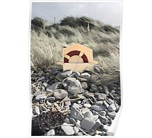 lifebuoy buried in the rocks Poster