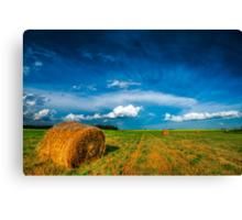 Under Prairie Skies XIX Canvas Print