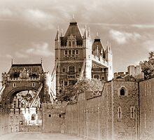 Tower Bridge  by larry flewers