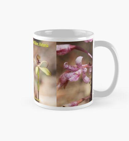 Orchids of Hidden Valley, Mitchell Shire Mug Mug