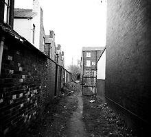 Alleyway by Barry Robinson
