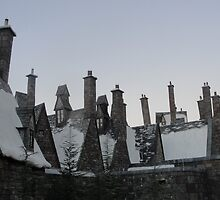 Harry Potter Chimneys at Universal Studios Florida by RandyDyer