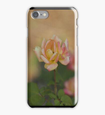 Pastel Rose iPhone Case/Skin