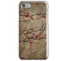 Autumnal Impression iPhone Case/Skin