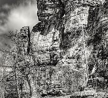 Ship Rock in Black and White 1 by Thomas Young