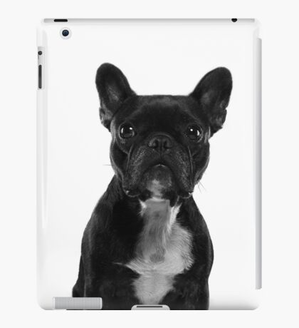 Sushi The Little French Bulldog Portrait iPad Case/Skin