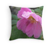 Alaska Wild Rose  (Rosa acicularis) Throw Pillow