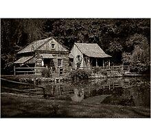 Cuttalossa Farms Photographic Print
