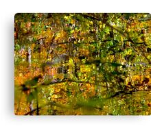 Water mashup Canvas Print