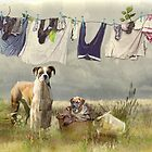 Wash Day by Trudi&#x27;s Images