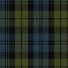 10014 Campbell Clan Tartan Fabric Print Ipad Case by Detnecs2013
