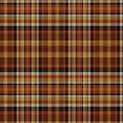 02359 Travis County, Texas District Tartan Fabric Print Iphone Case by Detnecs2013