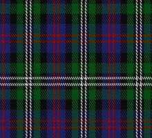02361 Davidson, Double Clan/Family Tartan Fabric Print Iphone Case by Detnecs2013