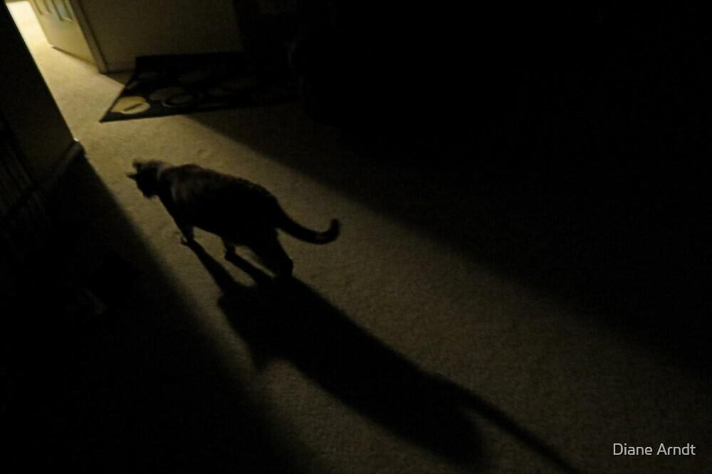 Beware...The Night Stalker by Diane Arndt