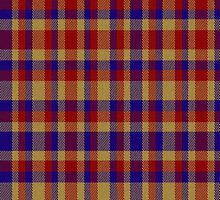 02366 Montgomery County, Maryland E-fficial Fashion Tartan Fabric Print Iphone Case by Detnecs2013