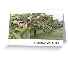 katunga walnuts postcard Greeting Card