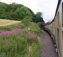 West Somerset Railway by lezvee