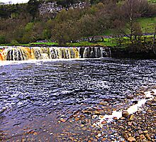 Wainwath Falls, River Swale, North Yorkshire by Ian Alex Blease
