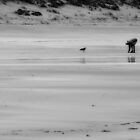 Beachcombers by ReneBohnen