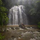 ellinjaa falls by col hellmuth