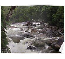 mossman gorge Poster