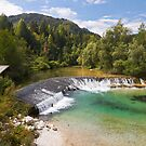 Radovna river scenery, Slovenia by Vladimir Rudyak