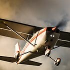 Sunset Arrival Cessna 172 by mattsavage