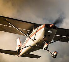 Sunset Arrival Cessna 172 by mattsavage